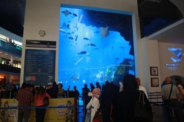 Nov 15 03_Dubai Mall-038